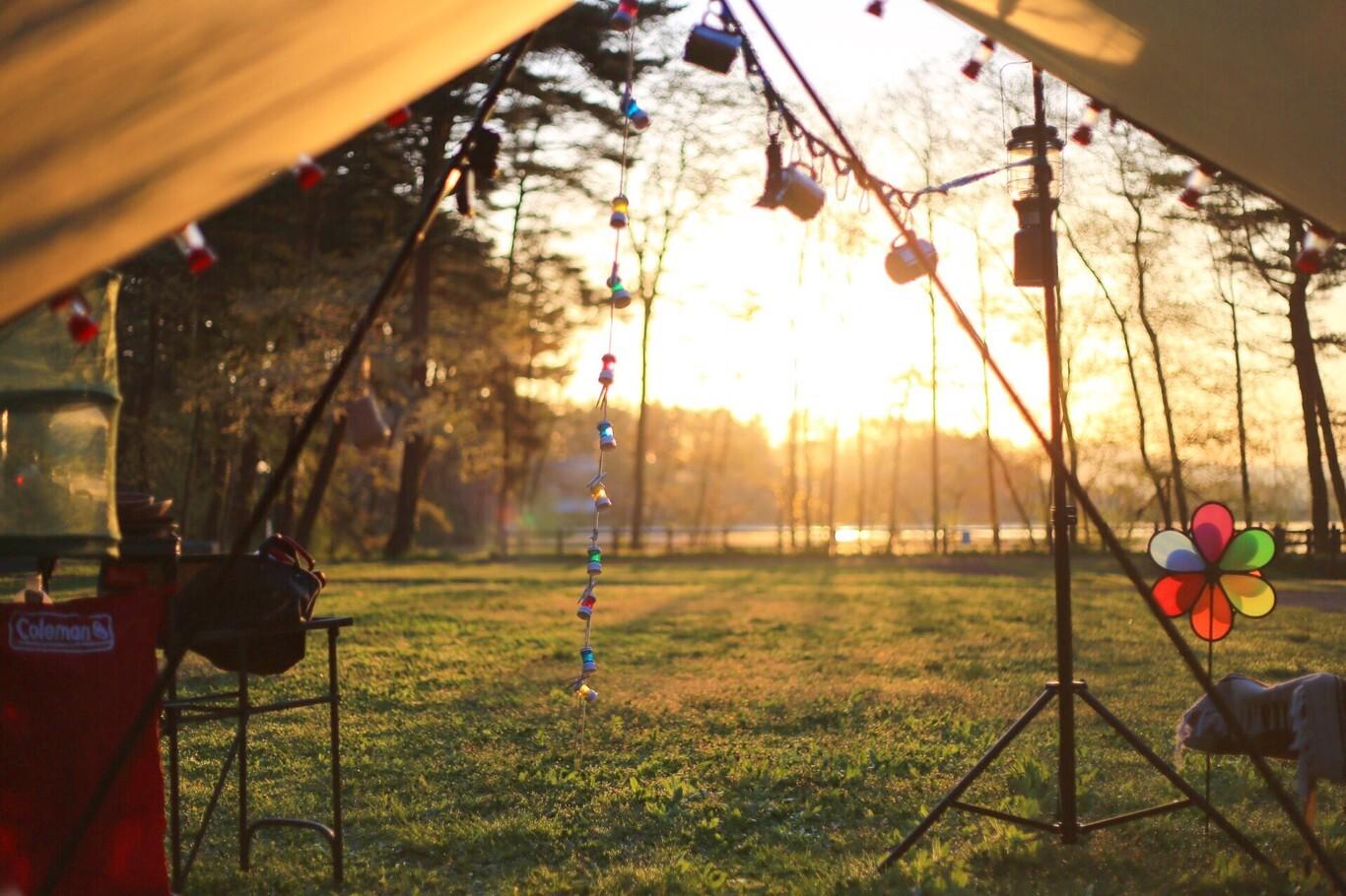 北上総合運動公園キャンプ場 の写真p1069