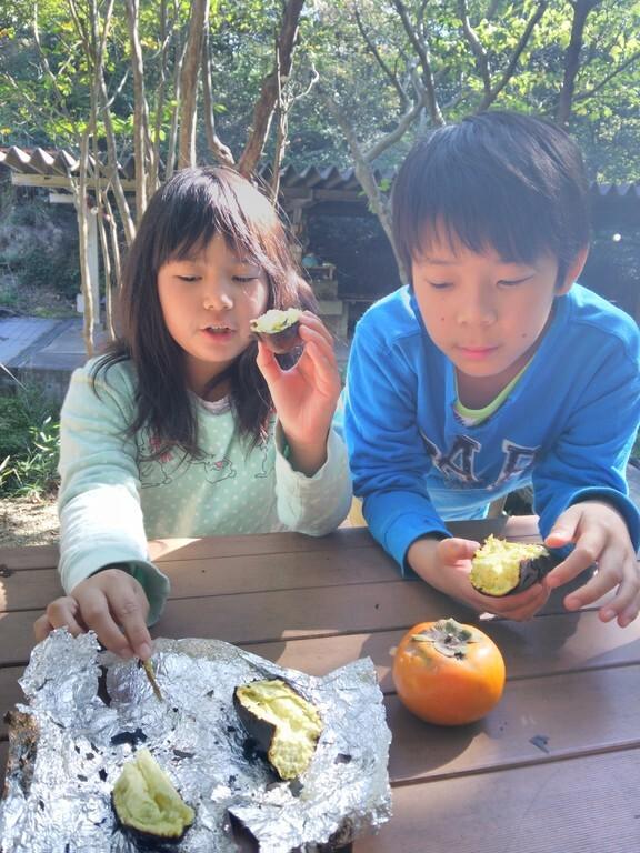 滋賀県希望が丘文化公園 の写真p3805
