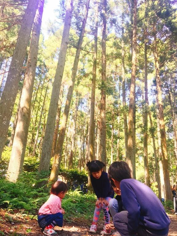 昭和の森フォレストビレッジ の写真p9151
