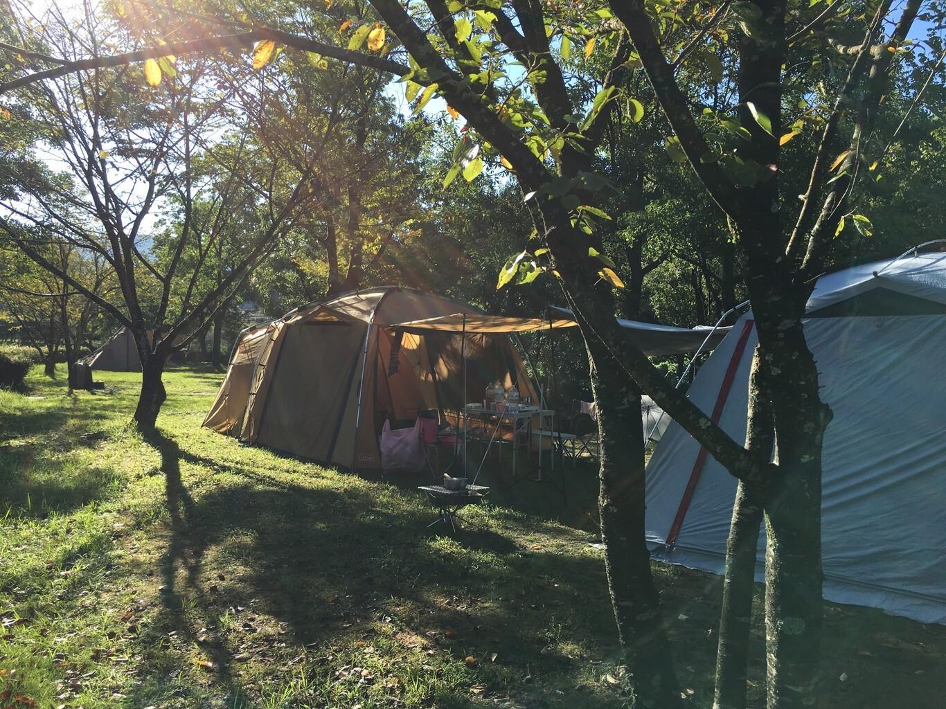 立神峡里地公園 キャンプ場 の写真p9807
