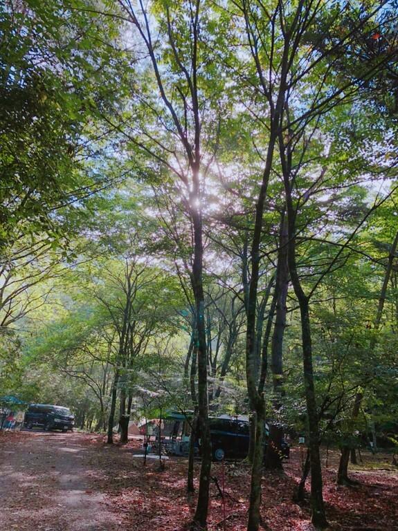 CAMP AKAIKE(キャンプ アカイケ) の写真p9843